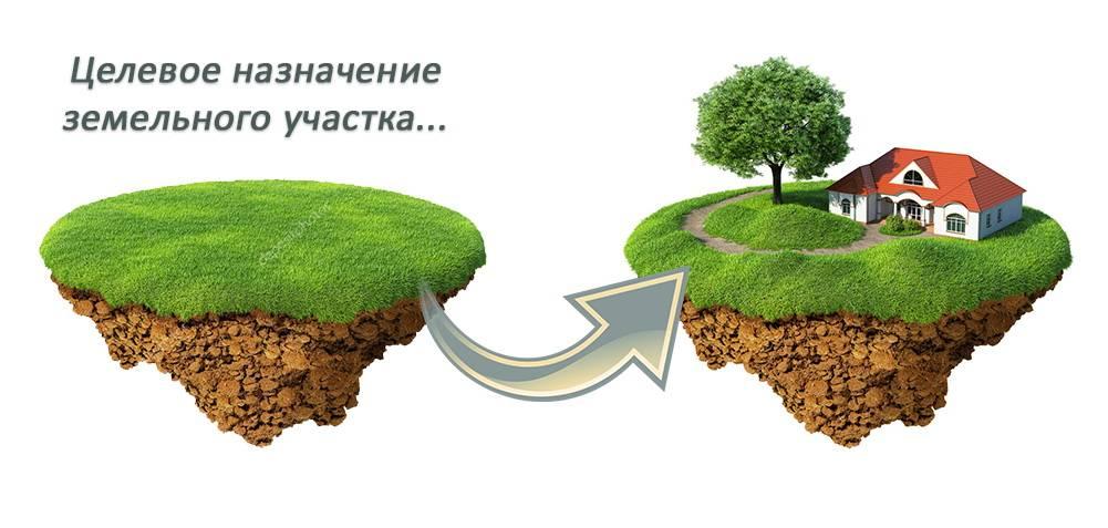 Выбираем земельный участок: что лучше ижс или днп?