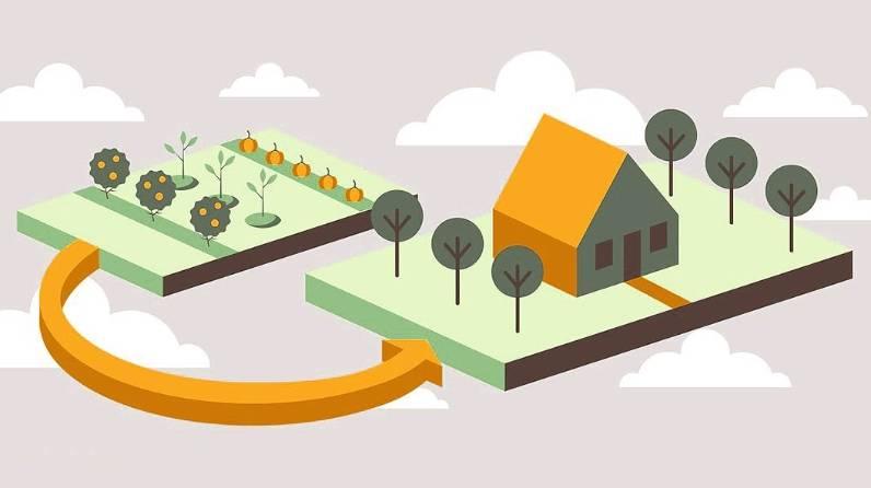 Основные виды использования земельного участка и вспомогательные