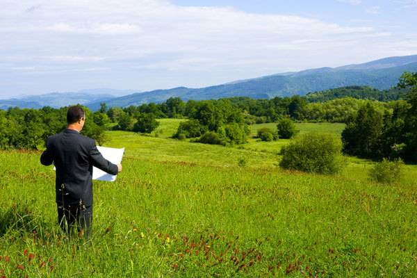 Предоставление земельных участков в аренду — особенности и процедура заключения договора