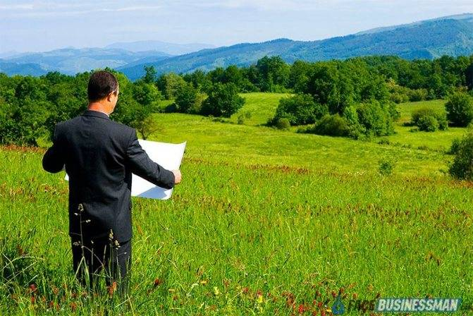 Расписка в получении денег за дом и земельный участок: образец заполнения, правила оформления, для чего необходима