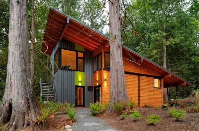 Проект дома с односкатной крышей: какой выбрать - одноэтажный или двухэтажный, детали на фото и видео