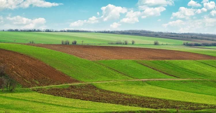 Нюансы правильного оформления купли-продажи земельного участка