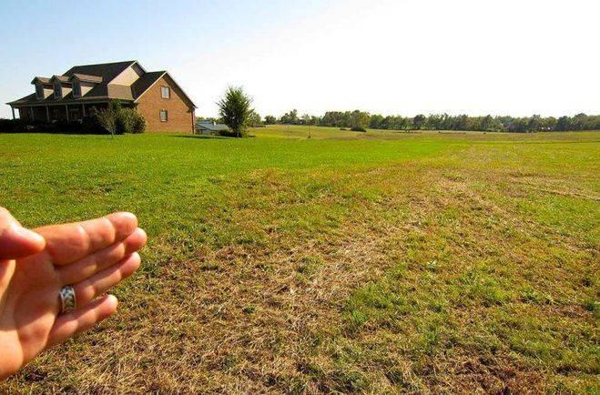 Как правильно выбрать земельный участок для строительства загородного дома