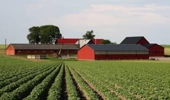 Важный вопрос: можно ли строить на землях сельскохозяйственного назначения? разбираемся в нюансах