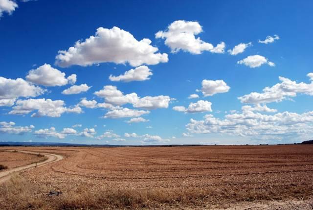 Что делать, если при межевании земельный участок оказался больше или меньше чем по документам