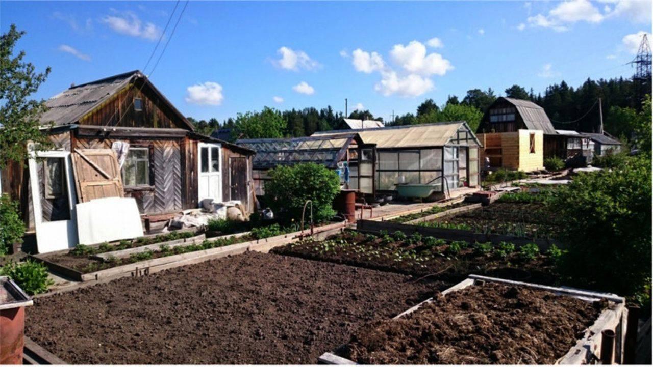 Продажа земельного участка без межевания в 2021 году: продажа участка с кадастровым номером, продажа дачи сада