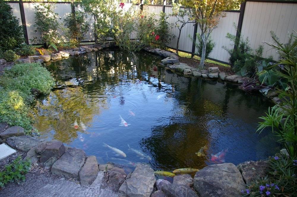 Яма для бассейна своими руками: как сделать выкопанный котлован под бассейн - morevdome.com