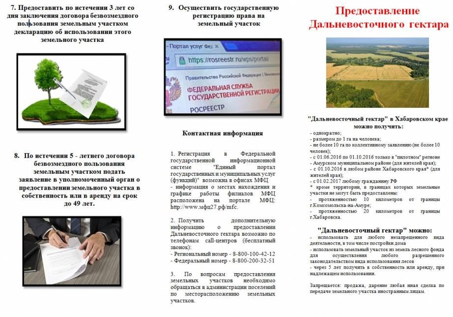 Порядок предоставления земли бесплатно: как правильно подготовиться?