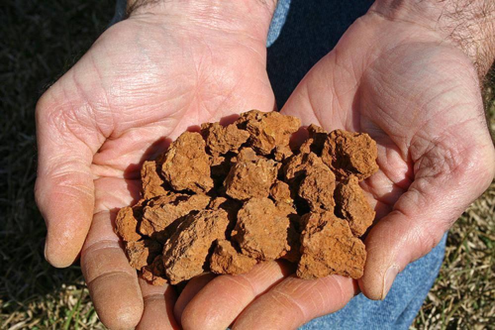 Как провести анализ грунта под фундамент - блог о строительстве