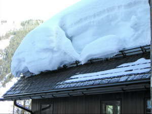 Снегозадержатели на крышу (60 фото): выбор для фальцевой кровли и установка, как организовать снегозадержание на конструкции из профнастила