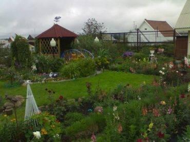 Особенности ведения садоводства на землях сельхозназначения