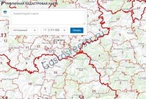 Как найти земельный участок по кадастровому номеру: поиск на карте, через справочник росреестра или обращение в госорганы