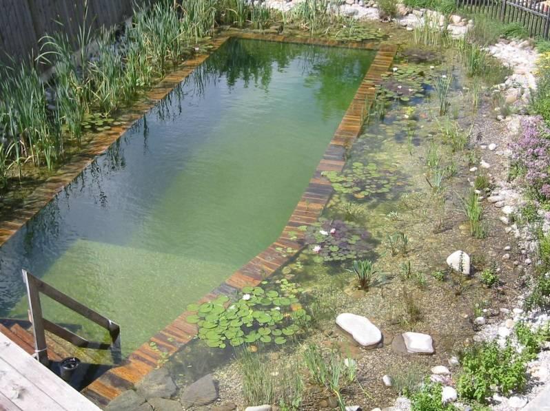 Построение пруда для разведения рыбы на даче: инструкция по созданию своего водоема своими руками и их виды