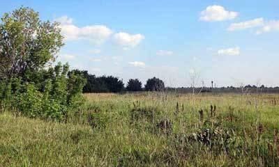 Как законно продать землю без межевания?