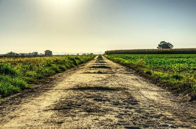 Аренда земельного участка у администрации города: как взять у государства, оформить (в том числе – без торгов), можно ли использовать его под огород, для посадки сада и т.д.своё
