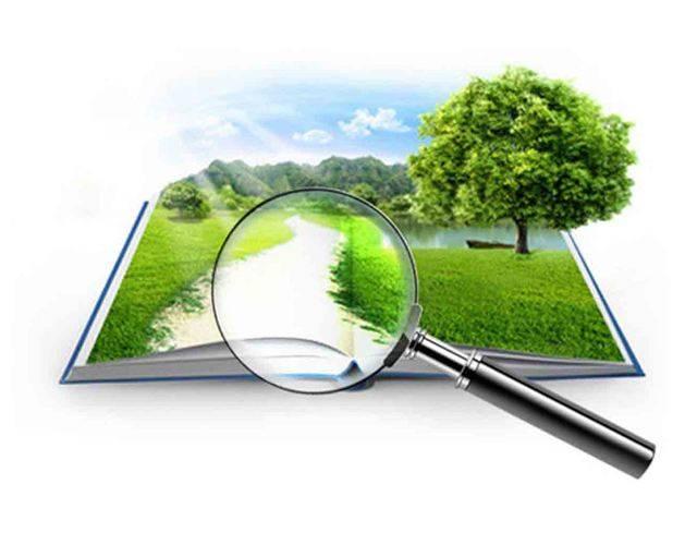 Расчет земельного налога: основные правила и конкретные примеры