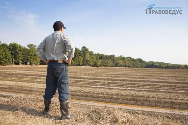 Переоформление права постоянного (бессрочного) пользования земельным участком в собственность, в аренду