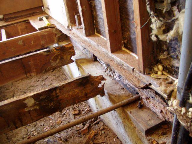 Срок жизни деревянного жилого дома? какие процедуры можно провести по его продлению? +видео