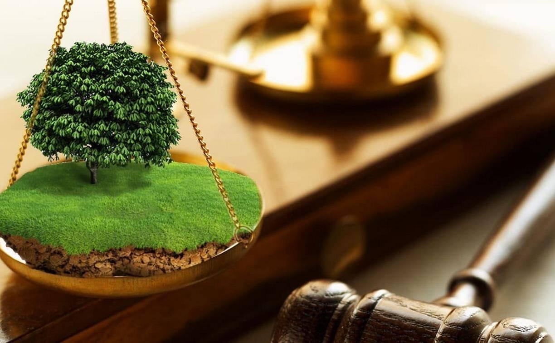 Наследование права аренды земельного участка — особенности и правила