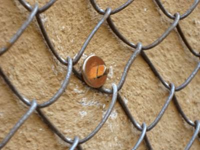 Фасадная штукатурка: виды и особенности применения