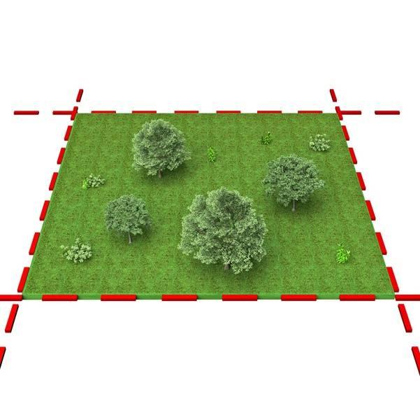 Распоряжение землей из категории сельскохозяйственного назначения