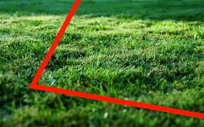 Как выделить земельную долю в земельном участке сельскохозяйственного назначения?