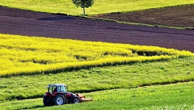Особенности составления договора аренды земельного участка сельскохозяйственного назначения