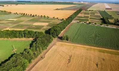Отличия кадастровой и рыночной стоимости земельных участков и возможность переоценки