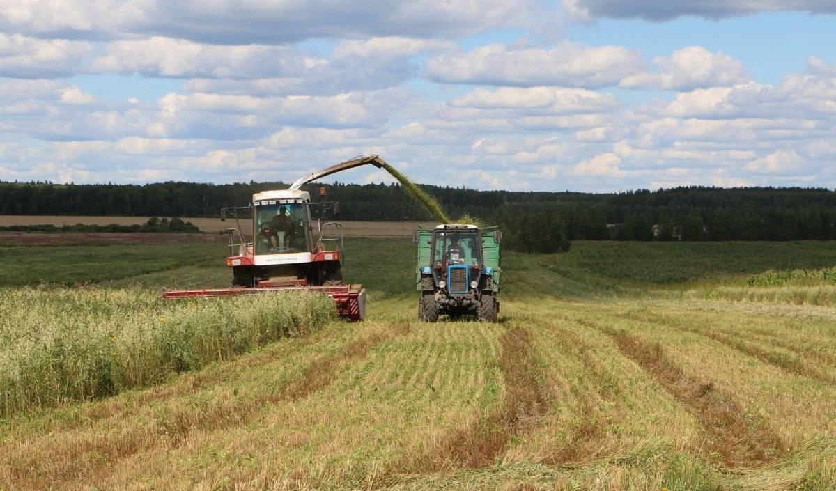 Как перевести землю сельхозназначения в ижс: необходимые условия для процедуры, пошаговая инструкция, а также можно ли получить разрешение другим способом? юрэксперт онлайн