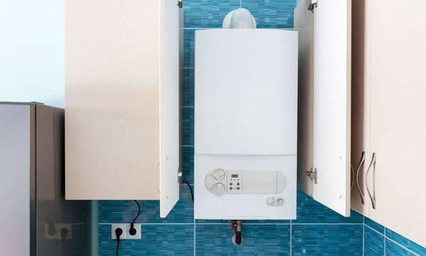 Как правильно выбрать газовую колонку для квартиры и частного дома + популярные производители и описание моделей