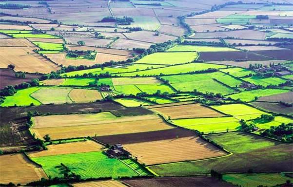 Строительство на землях сельхозназначения в 2021 году – что можно строить