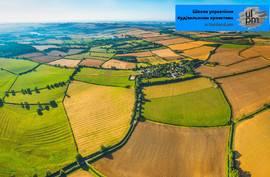 Задача не из легких: если земельный участок в аренде, можно ли его купить или продать?