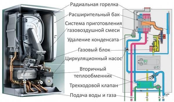 Настенный газовый котел, какой лучше: разновидности и важные особенности грамотного выбора