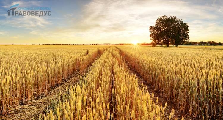 Право пользования земельным участком