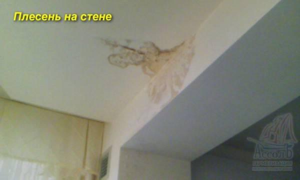 """""""кто должен ремонтировать межпанельные швы в доме"""""""