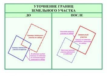 Изменение площади участка при межевании: что делать, если надел оказался больше или меньше, документальное оформление