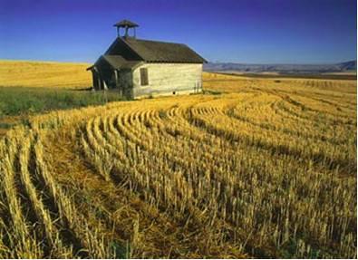 Можно ли строить дом на землях сельхозназначения в 2021 году