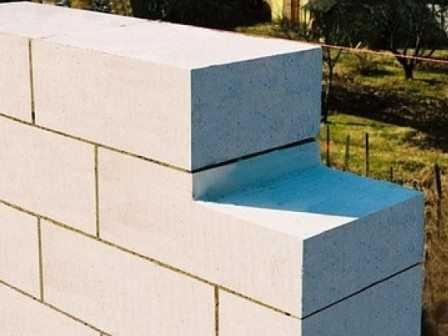 Каковы стандартные размеры пеноблока для стен и перегородок? размер полублока стенового