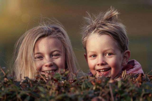 Земельный участок за третьего ребенка в 2021 году: кому положен и как получить земельный участок