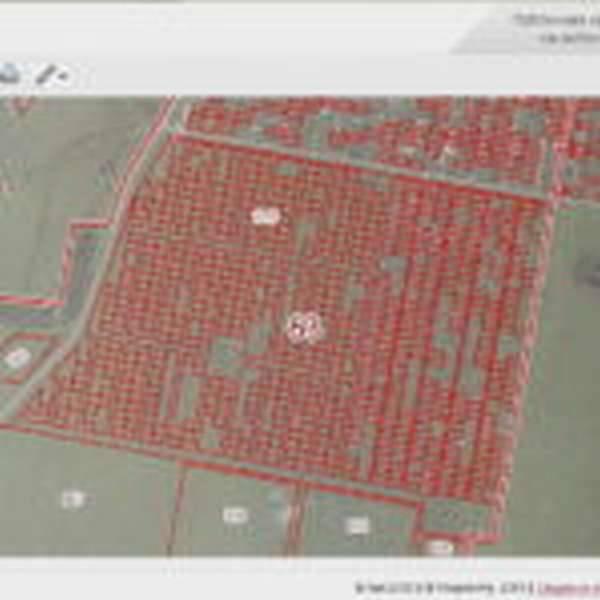 Как узнать кадастровый номер земельного участка по координатам: используя публичную карту, путем запроса в росреестр или мфц, при помощи опорных точек