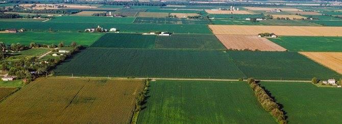 Преимущественное право покупки земель сельскохозяйственного назначения