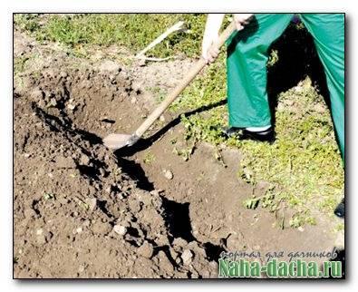 Копка ленточного фундамента экскаватором: стоимость и сроки, как копать вручную, выгодно ли нанимать землекопов?