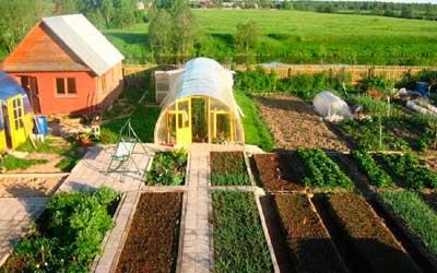 Особенности земель населенных пунктов для сельскохозяйственного использования и порядок их включения в границы