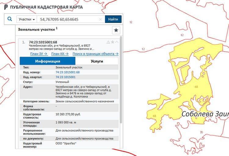 Как посмотреть границы земельного участка по кадастровому номеру и устранить несоответствия