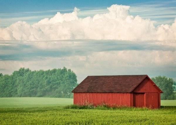 Перевод земли сельскохозяйственного назначения в другую категорию