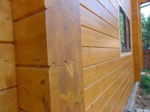 Как правильно обработать деревянный дом антисептиком