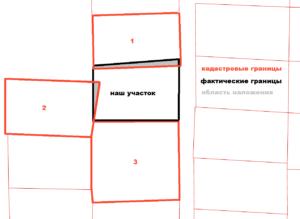 Как узнать статус земельного участка через интернет?