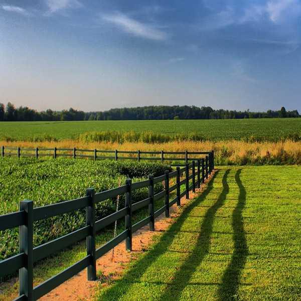 Как получить землю для лпх: предоставление участков для ведения личного подсобного хозяйства бесплатно юрэксперт онлайн