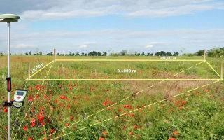 Как составляется акт выноса в натуру границ земельного участка?