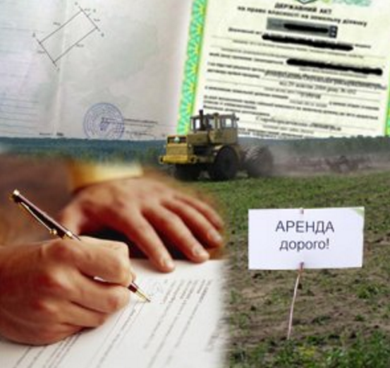 Грамотное решение вопроса, как продать землю, находящуюся в аренде
